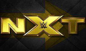 NTX Logo